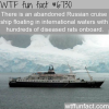 abandoned russian cruise ship wtf fun fact