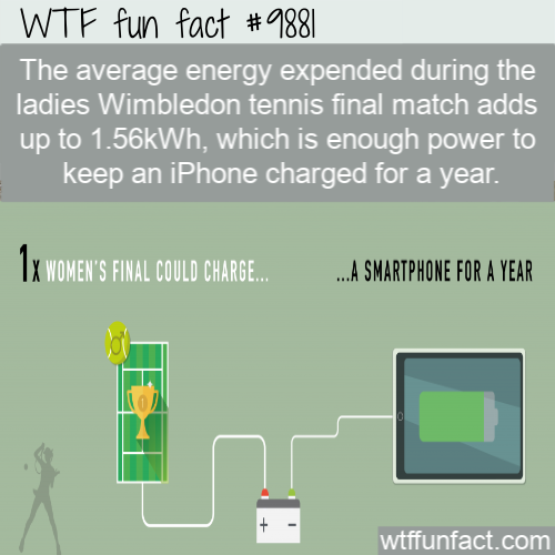 awesome fact wimbledon tennis energy