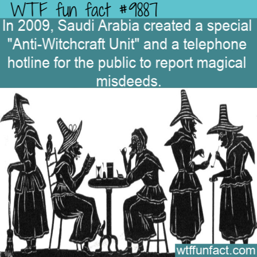 fun fact anti witchcraft unit