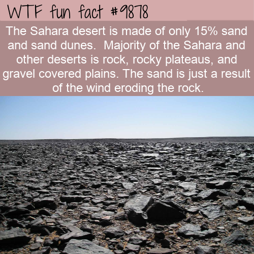 fun fact deserts are mostly rock
