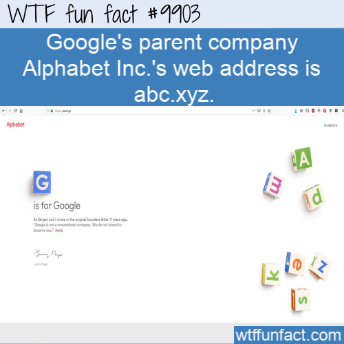 fun fact googles parent company alphabet domain name