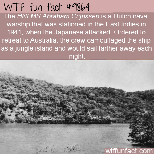 fun fact hidden warship in the jungle