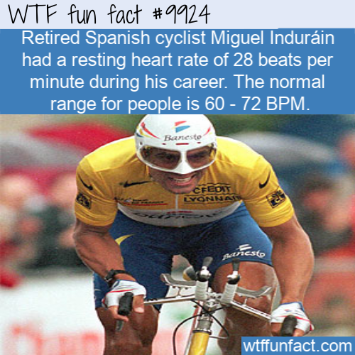 fun fact miguel indurain heartrate
