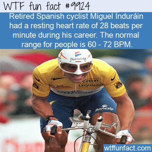 fun fact miguel indurain heartrate