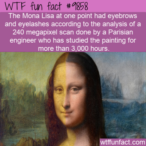 The Mona Lisa did have eyebrows