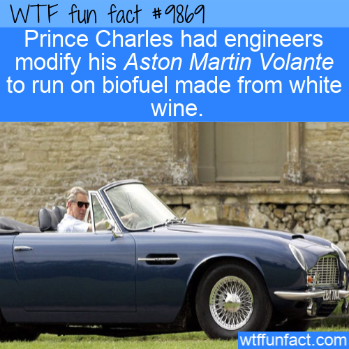 fun fact royal aston martin runs on wine
