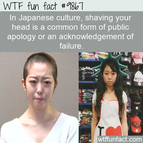 fun fact shaved head Japanese public apology
