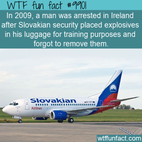 fun fact slovak cruel joke(1)