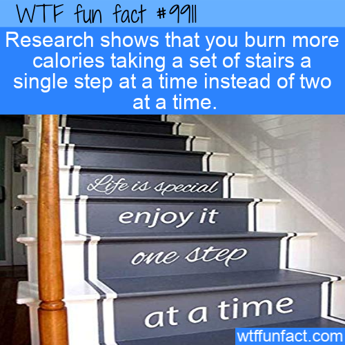 fun fact take stairs one at a time