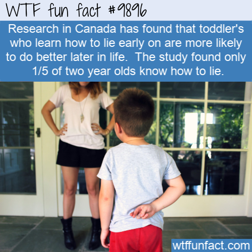 fun fact toddlers lie