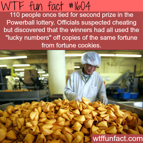 110 people tied in the powerball lottery -WTF fun facts