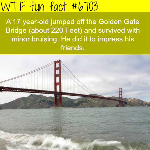 17 year old survived a fall from the Golden Gate Bridge…- WTF fun fact