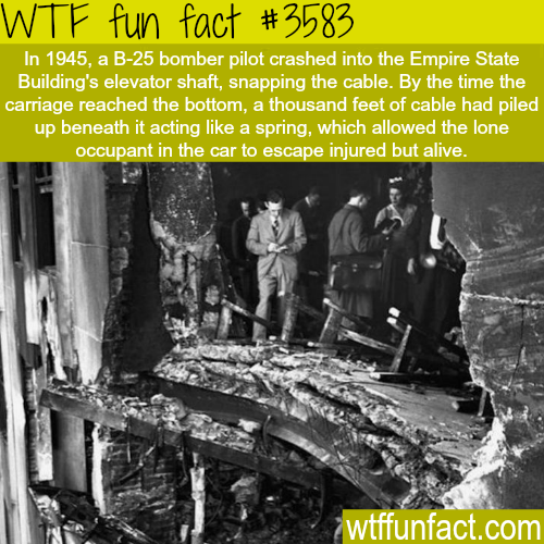 1945 airplane crashed in the empire state -  WTF fun facts