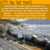 2004 tsunami wtf fun facts