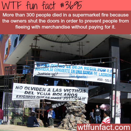 300 people die in a supermarket for this reason -  WTF fun facts