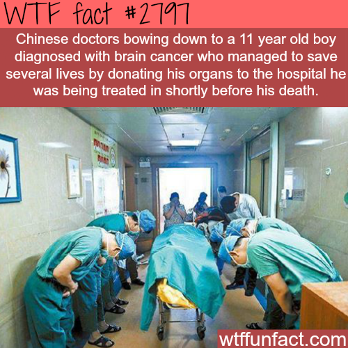 A kid in hospital saves many lives - WTF fun facts