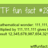 a mathematical wonder
