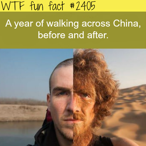 A year of walking across China! - WTF fun facts