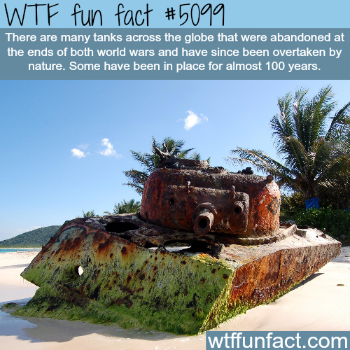 Abandoned tanks - WTF fun facts