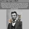 abraham lincoln was a crazy cat lady wtf fun