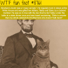 abraham lincolns cats wtf fun facts