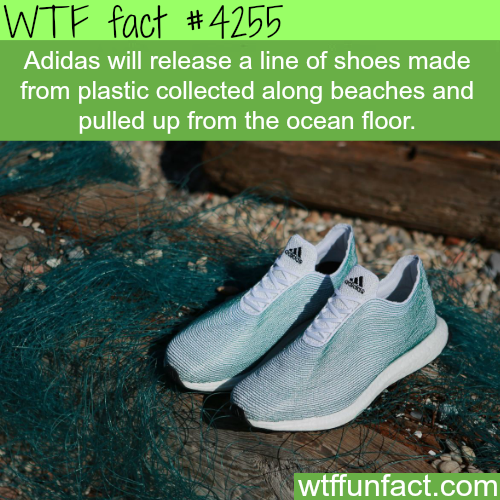 adidas shoes made from plastic collected from the WTF Facts