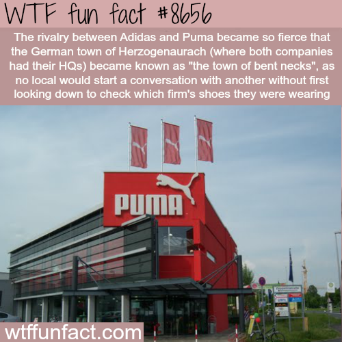 Adidas vs Puma - WTF fun facts