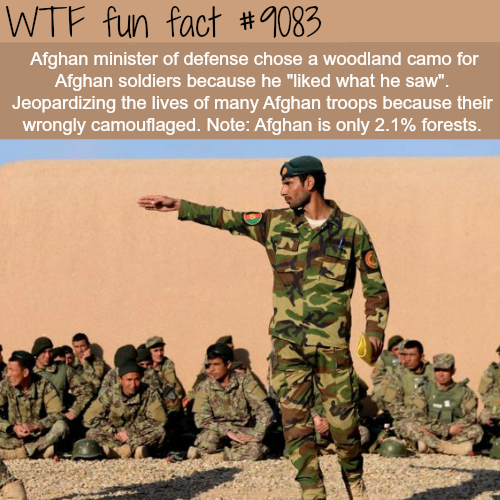 Afghan Minister of Defense Chooses the Wrong Camouflage - WTF fun fact