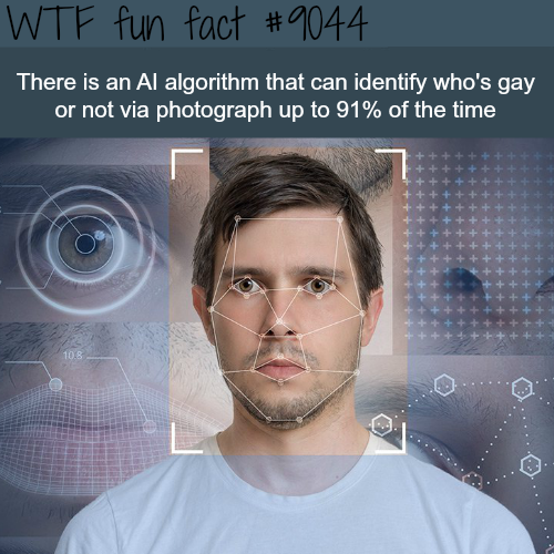 AI algorithm that can identify who's gay - WTF fun facts
