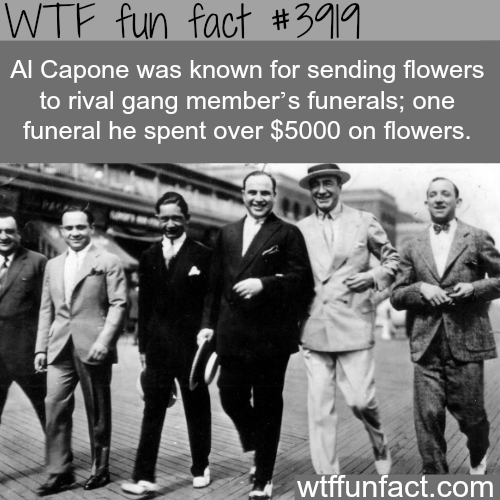 Al Capone facts - WTF fun facts