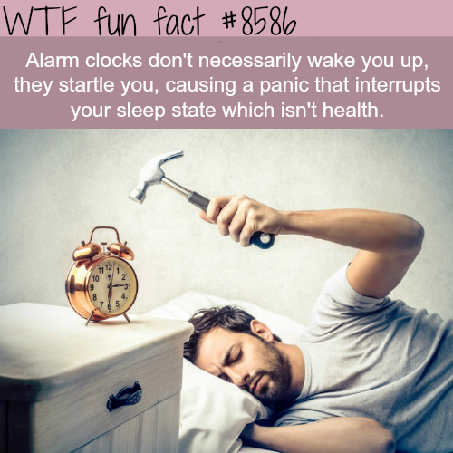 Alarm clocks are not good for your health - WTF fun facts