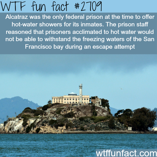 Alcatraz prison facts - WTF fun facts