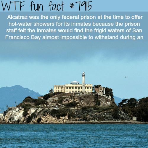 Alcatraz - WTF fun facts