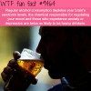 alcohol consumption and how it affects your mood