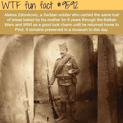 Aleksa Zdravkovic - WTF fun fact