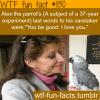 alex the parrot last words
