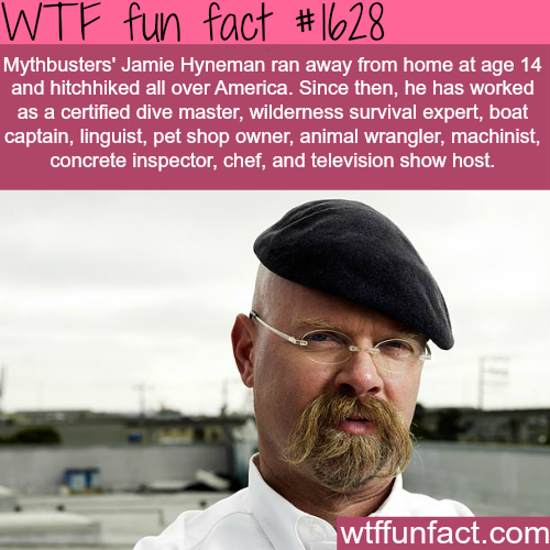 All the facts about Jamie Hyneman - WTF fun facts