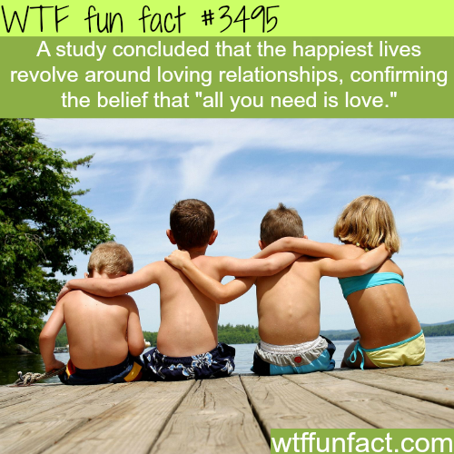 All you need is love -  WTF fun facts