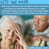 alzheimers disease facts wtf fun facts