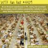 amazon warehouse in pennsylvania wtf fun facts