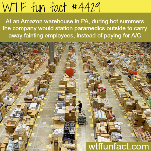 Amazon warehouse in Pennsylvania -   WTF fun facts