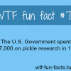 american facts
