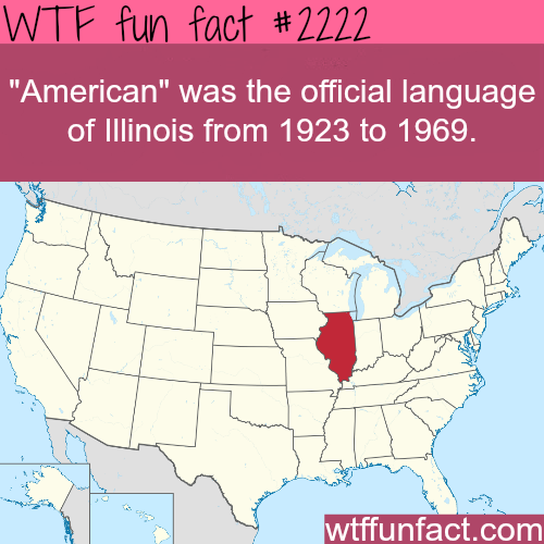 American language - WTF fun facts
