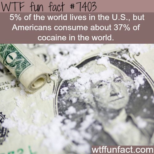 Americans consume the most cocaine in the world - FACTS