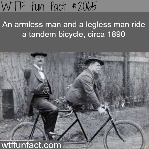 An armless man and a legless man - WTF fun facts