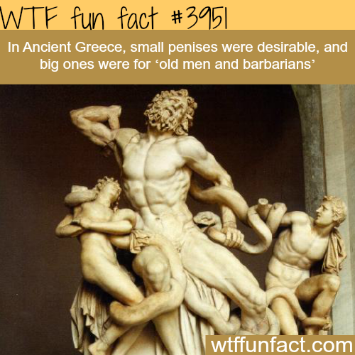 Ancient Greece on penis size - WTF fun facts