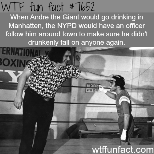 Andre the Giant - WTF fun facts