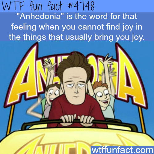 Anhedonia - WTF fun facts