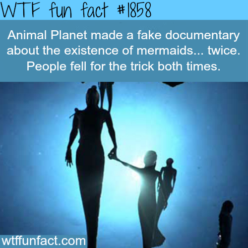Animal Planet Mermaids movies - WTF fun facts