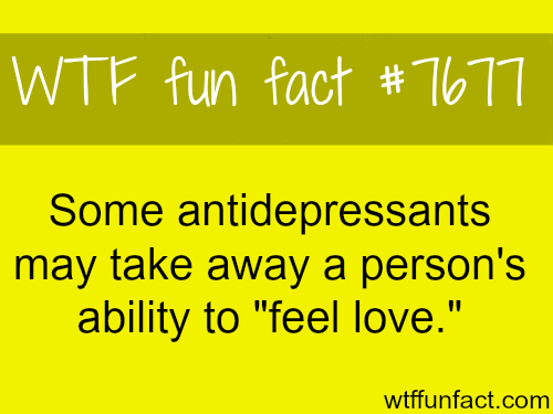 antidepressants may take away the ability to feel love - WTF fun facts